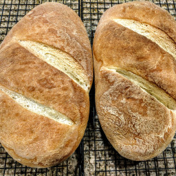 Rustic Sourdough Bread
