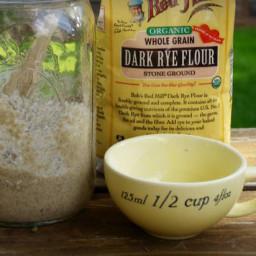 Rye Sourdough Starter