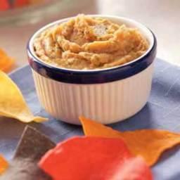 Salsa Bean Dip Recipe