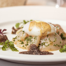 Scallop Carpaccio, Soft Cooked Egg and White Truffle Dressing Recipe