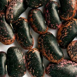 Scarlet Runner Beans with Garlic