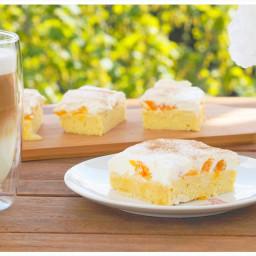 Schneller Mandarinen-Quark-Schmand Blechkuchen