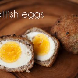 Scottish Eggs