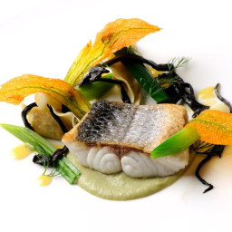 Sea bass with prawn tortellini, fennel purée and white wine sauce