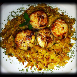 seared-scallops-with-lemon-orzo-3.jpg