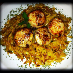 seared-scallops-with-lemon-orzo-4.jpg