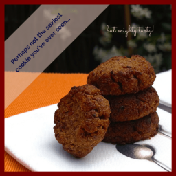 SEXY-UGLY Prune and Orange Cookies