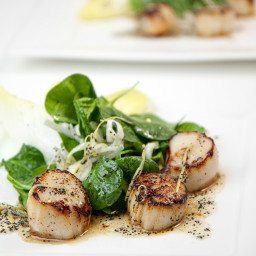 Shrimp and/or Scallop Salad