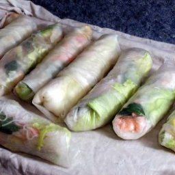 Shrimp Spring Rolls (Goi Cuon)