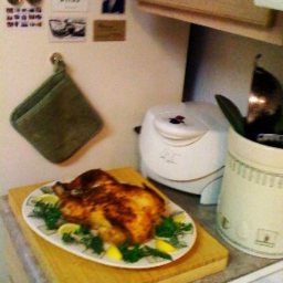 Simon & Garfunkel Roaster Chicken