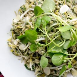 skinnymixer's Asian Herb Salad