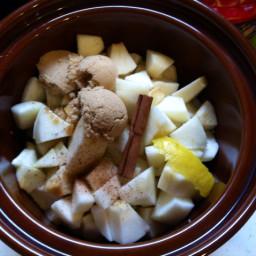 slow-cooker-apple-sauce.jpg