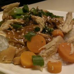 slow-cooker-honey-sesame-chicken-10.jpg