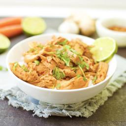 Slow Cooker or Instant Pot Lime Teriyaki Chicken