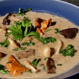 Soup - Cream Of Wild Mushroom