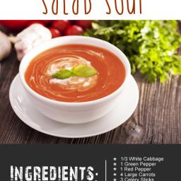 Soup Maker Deconstructed Salad Soup