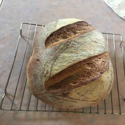 sourdough-bread-4a70a3d25035709b70dd4b92.jpg