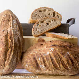 Sourdough Sprouted Wheat Loaves