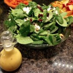 Spinach Cranberry Salad with Creamy Citrus Dressing