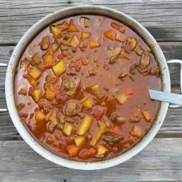 Spring Harvest Soup (aka Hamburgar Soup)