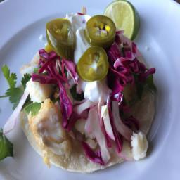 steves-fish-tacos-fc1fa04c37a5f8e7f6adf172.jpg