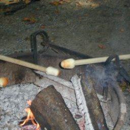 stick-biscuits-2.jpg