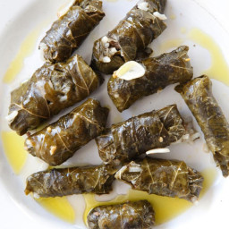 Stuffed Grape Leaves with Cucumber-Yogurt Sauce
