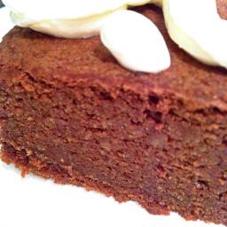 sugar free grain free flour free low carb chocolate sponge cake