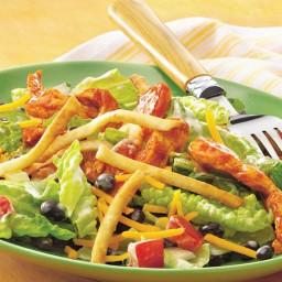 taco-seasoned-chicken-salad-with-crispy-tortilla-topping-1973638.jpg