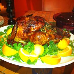 thanksgiving-turkey-3.jpg