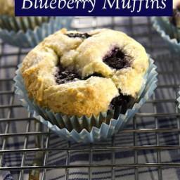 the-best-gluten-free-blueberry-93d6db-0570f22f92786831e89aa0ae.jpg