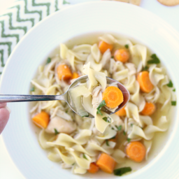 thebestcrockpotchickennoodleso-d9fe19.png