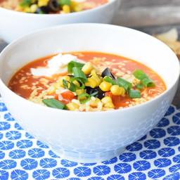 Tortilla soup (low FODMAP, gluten-free, lactose-free, vegetarian)