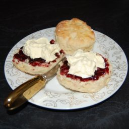Traditional Devonshire Tea Scones