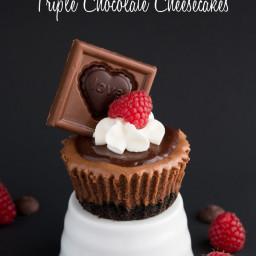 Triple Chocolate Mini Cheesecakes