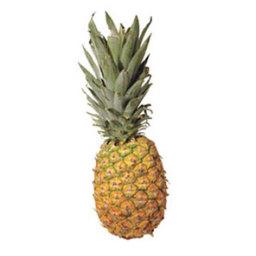 tropical-treat-3de3c6.jpg