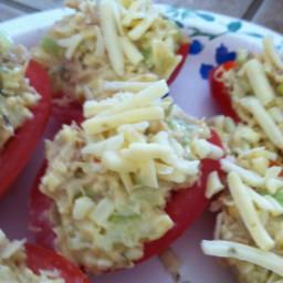 tuna-salad-in-roma-tomato-boat-44b00b.jpg