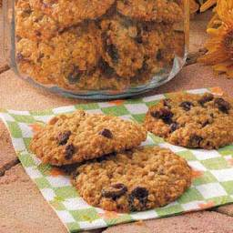 Cranberry Oat Yummies