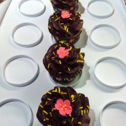 vanilla-cupcakes-7.jpg