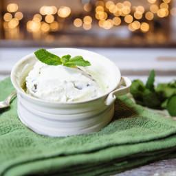 Vegan Mint Chocolate Chip Ice Cream Recipe