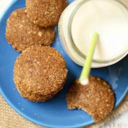 Vegan Snickerdoodles (oil-free + gluten-free)