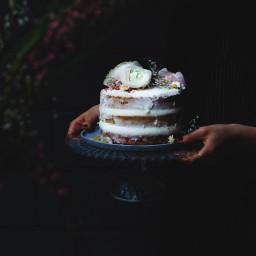 Vegan Spring Naked Layer Cake