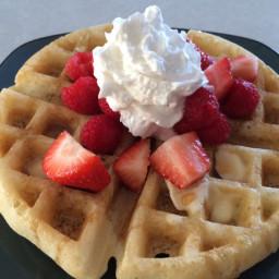 waffles-gluten-free-dairy-free-2.jpg