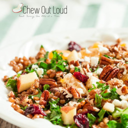wheat-berry-salad-with-apples-and-cranberries-1641139.jpg