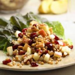 wheat-berry-salad-with-red-fru-79b78a.jpg