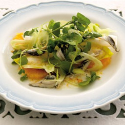 White anchovy, baby fennel and orange salad