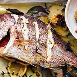 Whole snapper roasted with herbs and potato