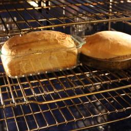 whole-wheat-bread-5.jpg