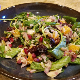 Winter Harvest Salad with Wild Rice, Cranberries and Citrus