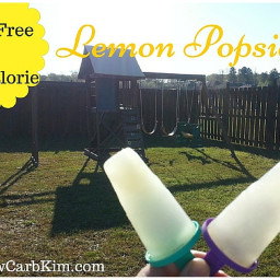 Zero Calorie Sugar Free Popsicles ~ Lemon Flavor